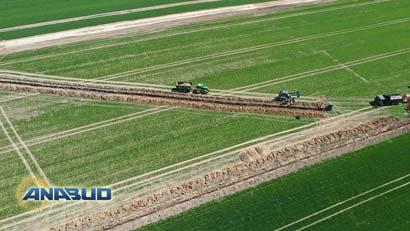 Budowa Dróg Dojazdowych do Farm Wiatrowych